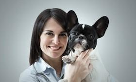 Urlaub mit dem Haustier: Medizinische Vorsorge