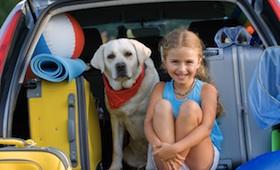 Urlaub mit dem Haustier: Reisevorbereitungen